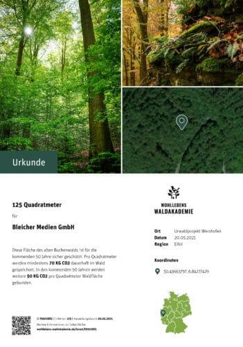 Urwaldprojekt Buchenwald Urkunde