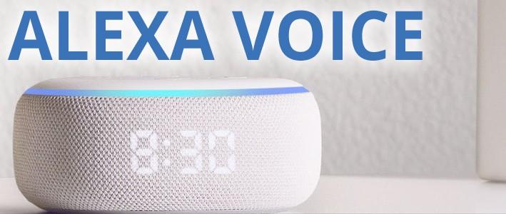 Alexa Voice Skills für Ihren Branchenbucheintrag